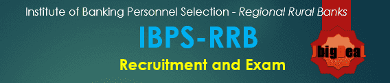 IBPS RRB Exam 2017 - IBPS RRB Recruitment 2017