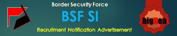 BSF SI Recruitment 2017 Application Form