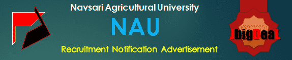 NAU Recruitment 2017 Online Application Form