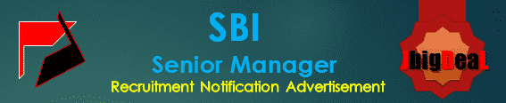 SBI Senior Manager Recruitment 2017 Online Application Form