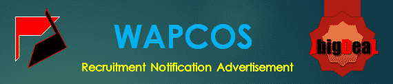 WAPCOS Recruitment 2018 Application Form