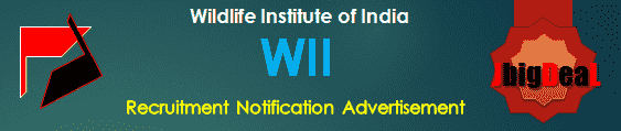 WII Recruitment 2018 Application Form
