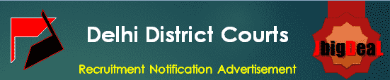 Delhi District Courts Recruitment 2018 Application Form