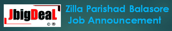 Zilla Parishad Balasore GRS Recruitment 2019 Application Form