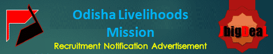 Odisha Livelihoods Mission Project Assistant, Block Livelihood Coordinator, Block Project Manager Recruitment 2020 Online Application Form