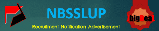 NBSSLUP Young Professional & Skilled Personnel Recruitment 2020 Application Form