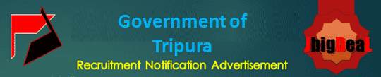 Government of Tripura Lower Division Clerk Recruitment 2021 Online Application Form
