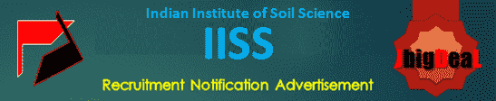 IISS Young Professional Recruitment 2021 Application Form